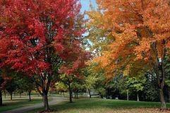 Changing Seasons Autumn Fall