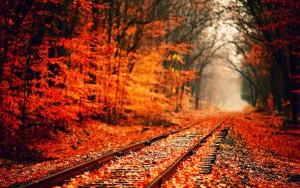 Autumn Pathways!